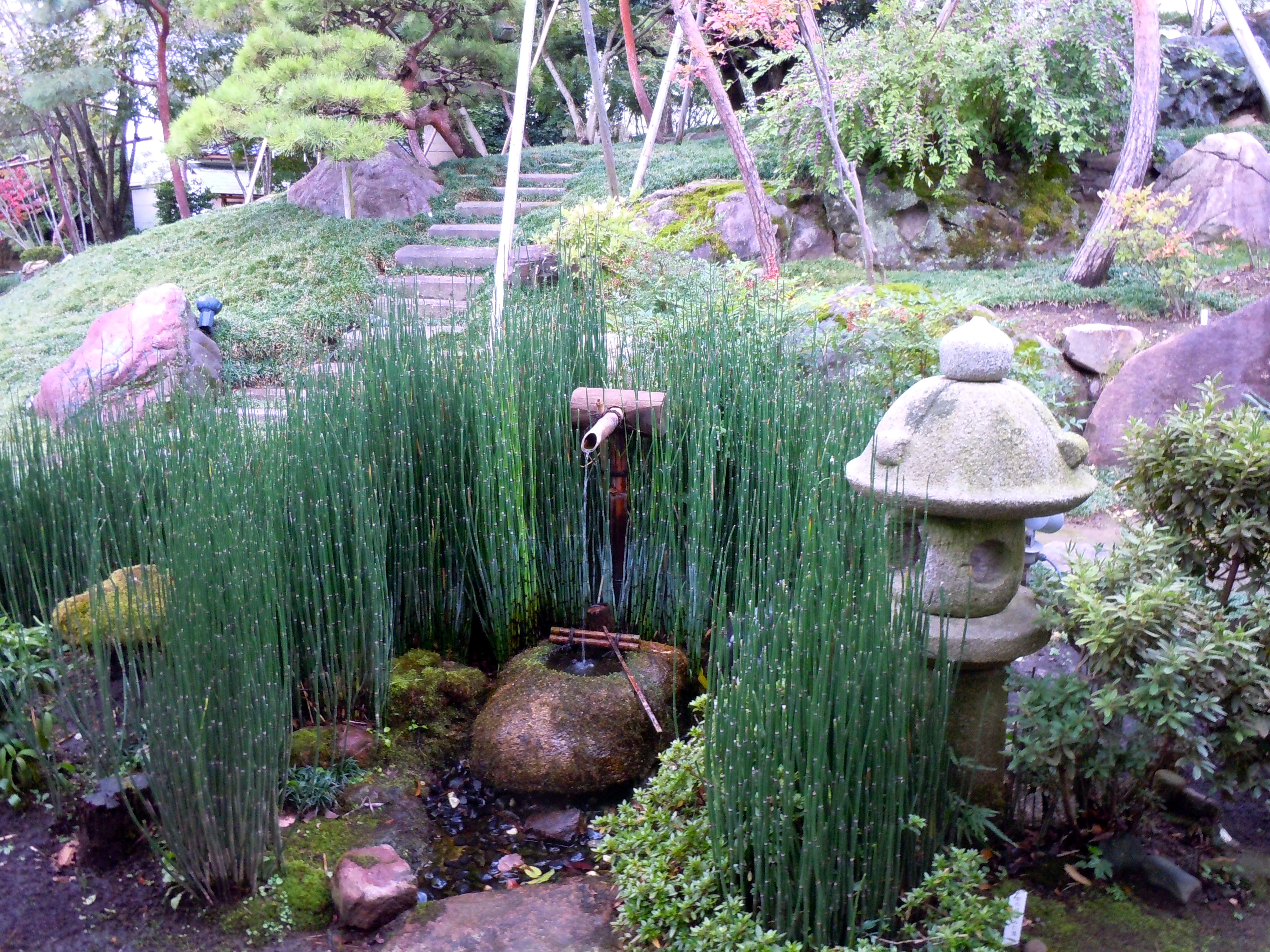 Traditional japanese gardens - A Traditional Japanese Garden In Toyama Japan