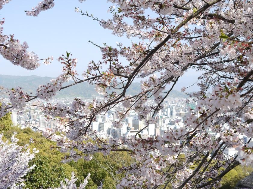 On top of Matsuyama Castle, overlooking the city.